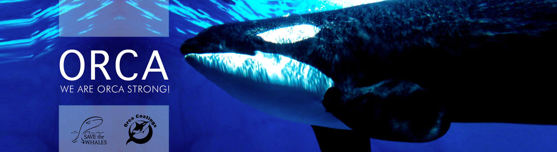 We are orca Strong!